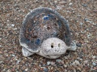 SMALL TURTLE